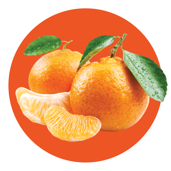 Sugar Free Tangerine