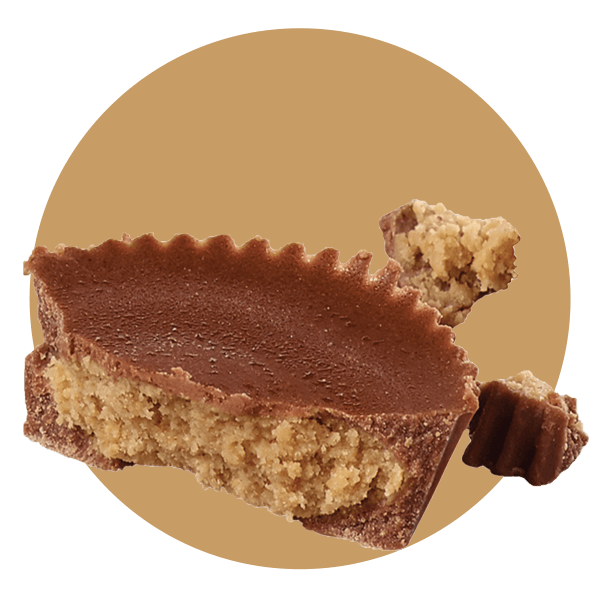 Chocolate Peanut Butter Cup